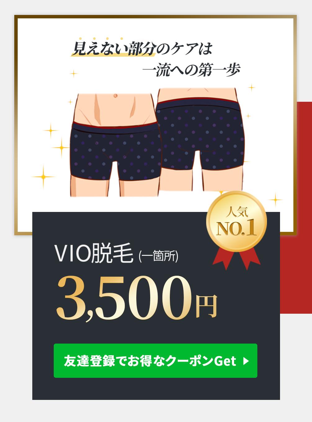 見えない部分のケアは 一流への第一歩VIO脱毛(1箇所)3500円